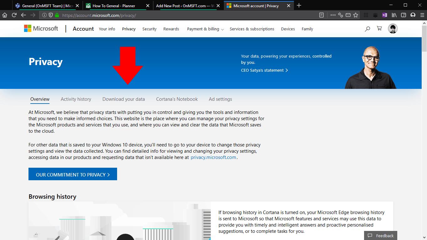 Captura de pantalla de la descarga de datos de Microsoft