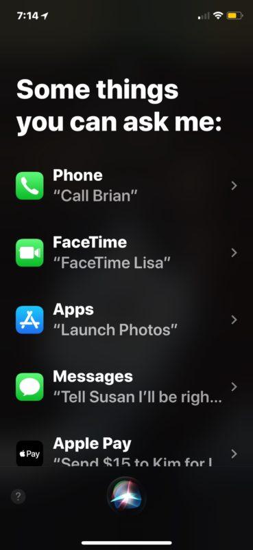 Accede y activa Siri en iPhone X.