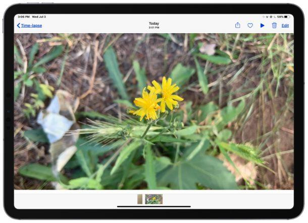 Reproducir el video grabado a intervalos en el iPad