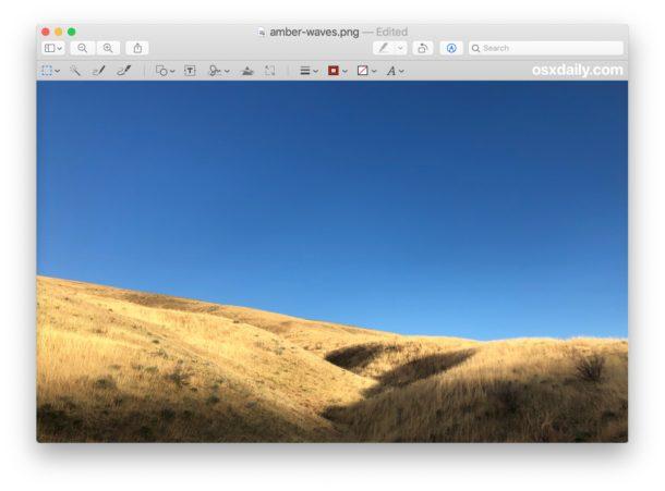 Antes de voltear la imagen en la Vista previa de Mac