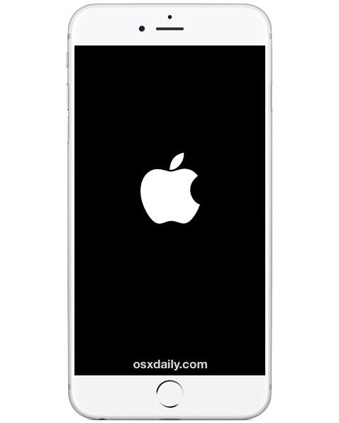 ¿El iPhone se reinicia al azar?  He aquí cómo solucionarlo
