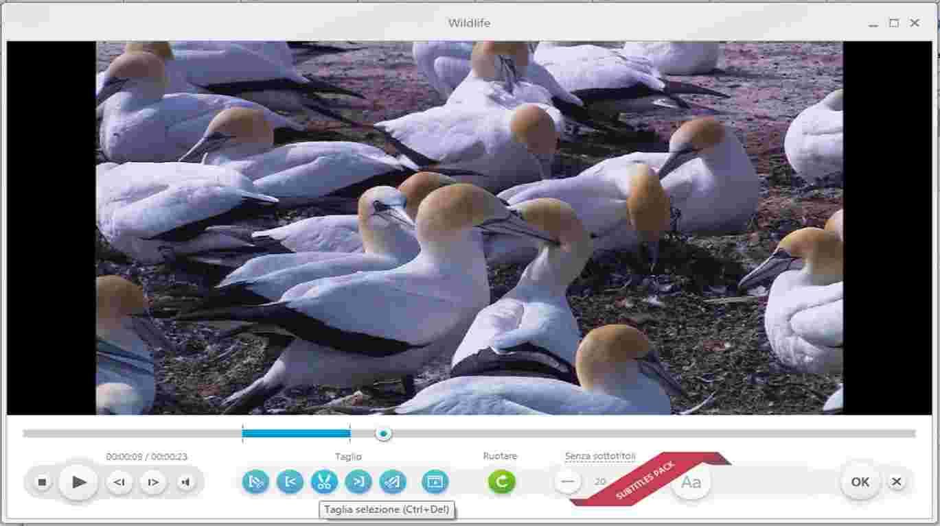 cortar un video con freemake video converter